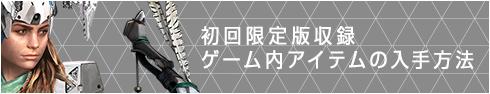 初回限定版収録ゲーム内アイテムの入手方法