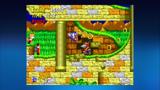 ソニック・ザ・ヘッジホッグ2 ゲーム画面2