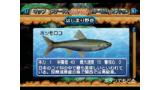 うお 7つの水と伝説のヌシ ゲーム画面13
