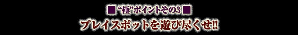 """■""""極""""ポイントその3 プレイスポットを遊び尽くせ!!"""