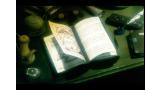 WILD ARMS ゲーム画面1