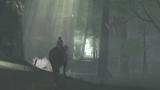ワンダと巨像 ゲーム画面3