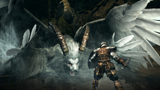 DARK SOULS with ARTORIAS OF THE ABYSS EDITION ゲーム画面4