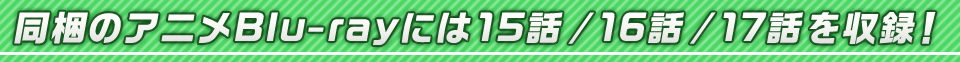 ■同梱のアニメBlu-rayには15話 / 16話 / 17話を収録!