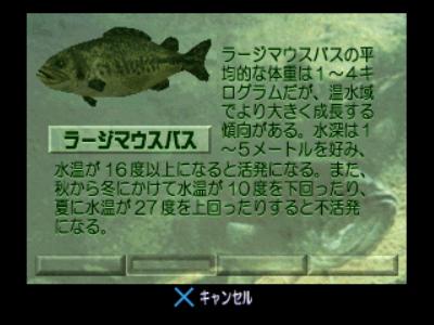 スーパーブラックバスX2 ゲーム画面13