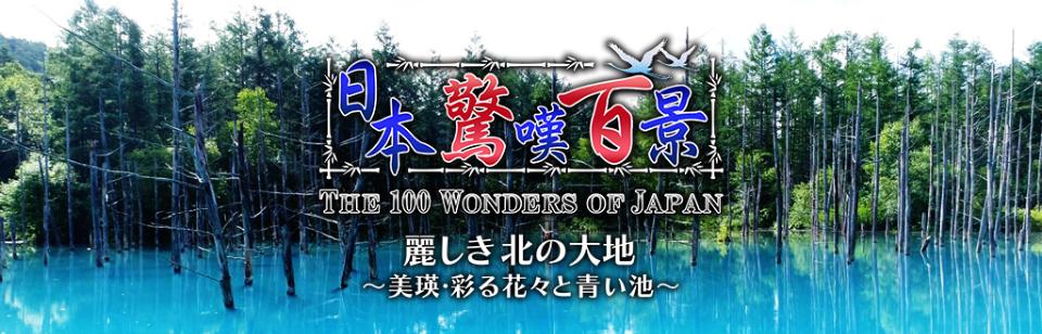 日本驚嘆百景 麗しき北の大地~美瑛・彩る花々と青い池~