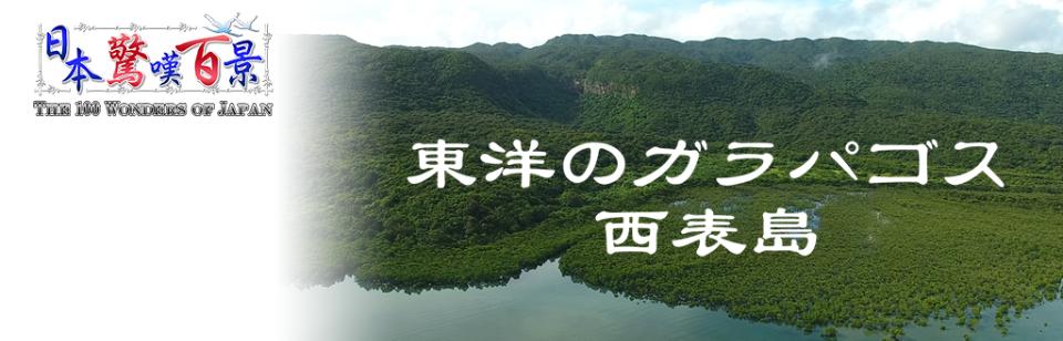 日本驚嘆百景 東洋のガラパゴズ~イリオモテジマ~