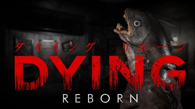 ゲームソフト dying reborn プレイステーション