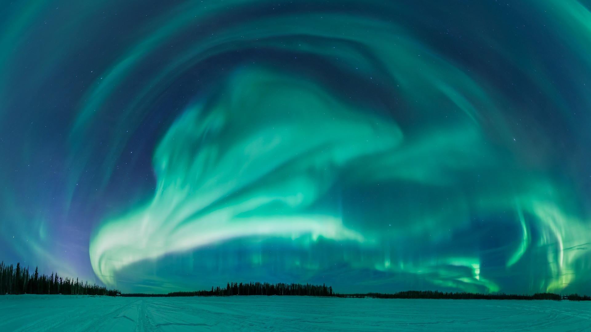 NORTHERN LIGHTS  -極北の夜空に輝く光の物語-_body_2