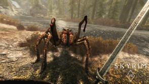 The Elder Scrolls V: Skyrim VR_gallery_3